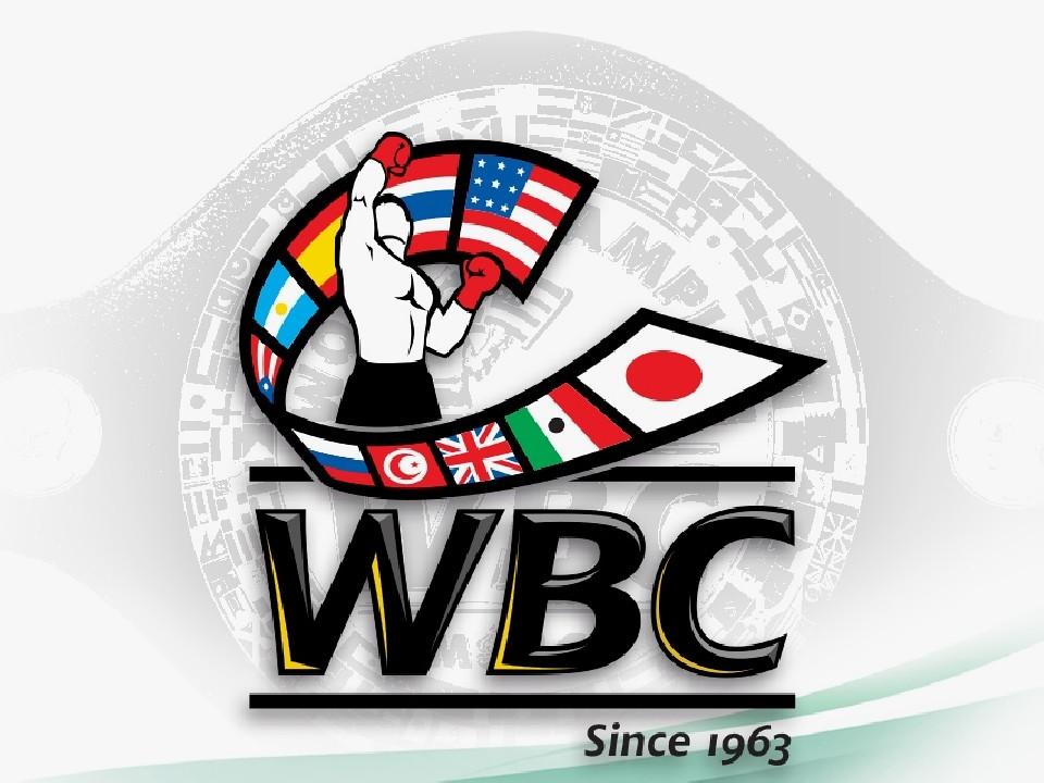 WBCから対戦指令